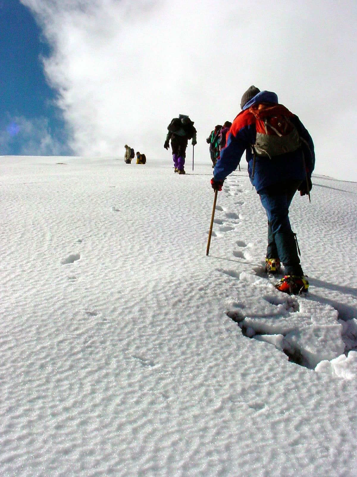 Team going mountain climbing