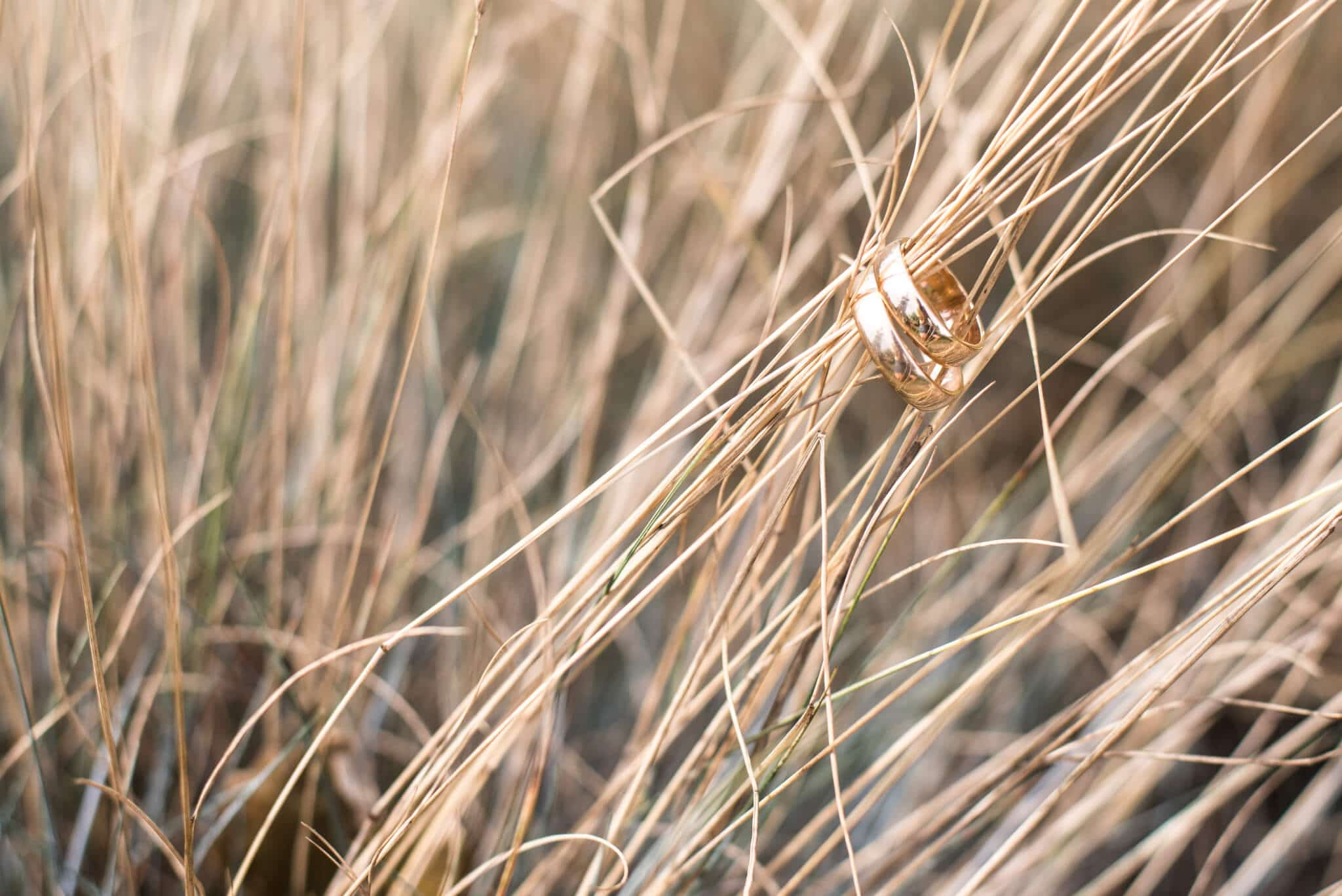 gold rings on stalks of straw